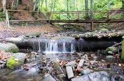 Waterfall scene. Beautiful waterfall scene, ukraine carpathian shipot waterfall Royalty Free Stock Image