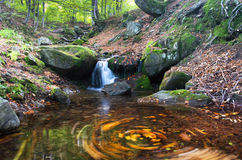 Waterfall scene. Beautiful waterfall scene, ukraine carpathian shipot waterfall Stock Photos