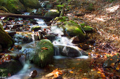 Waterfall scene. Beautiful waterfall scene, ukraine carpathian shipot waterfall Royalty Free Stock Images