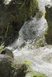 Waterfall scene in white water Royalty Free Stock Images