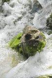 Waterfall scene in white water. Breaking on rocks Royalty Free Stock Photos