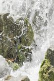 Waterfall scene in white water Royalty Free Stock Photography