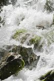 Waterfall scene in white water Stock Images