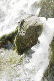 Waterfall scene in white water Stock Photography