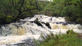 Waterfall in the Scottish Highlands stock footage