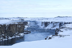 Waterfall Selfoss in Iceland, wintertime Stock Photography