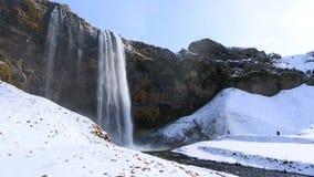 Waterfall Seljalandsfoss in Iceland stock video