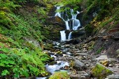 Waterfall Shypit in Pylypet, Zakarpatska oblast, Ukraine. Royalty Free Stock Photo
