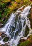 Waterfall Shypot in Carpathian forest. Beautiful waterfall Shypot comes out of a rocky hillside in forest. spectacular landscape on mountain river view from the Stock Photos