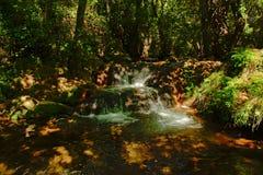 Waterfall in  Sierra Norte de Sevilla Natural Park, Spain. One of the Huesna waterfalls in  San Nicolas Del Puerto, Sierra Norte de Sevilla Natural Park Stock Photos
