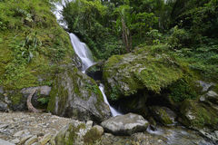 Waterfall in Sikkim Stock Photos