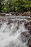 Waterfall. Silky stream nature at eyelevel Stock Images