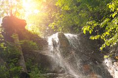 Waterfall in Slovak Paradise. Waterfall in a forest in Slovak Paradise, Slovakia royalty free stock image
