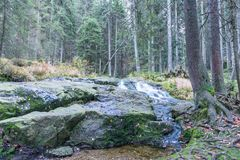 Waterfall at the small Arber lake, Bavaria, Germany.  Royalty Free Stock Images