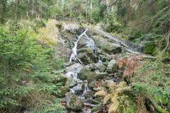 Waterfall at the small Arber lake, Bavaria, Germany.  Royalty Free Stock Image