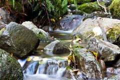 Waterfall. A small beautiful waterfall surrounded by rocks Royalty Free Stock Photography
