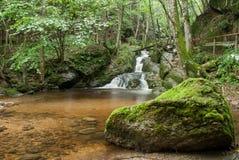 Waterfall. Small waterfall falling into pond Royalty Free Stock Photo