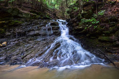Waterfall on a small Native Brook Trout Stream. Stock Image