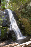 Waterfall at the small river Cascade Creek Royalty Free Stock Image