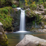 Waterfall. Small river in the deep forest turns into charming waterfall Royalty Free Stock Photos