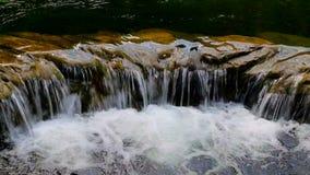 Waterfall. Small waterfall in tropical garden stock video