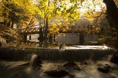 Waterfall. Small waterfall in Yedigoller-Bolu Stock Photo