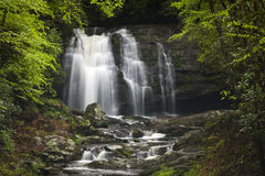 Waterfall In Smoky Mountain National Park Royalty Free Stock Photo