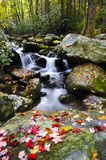 Waterfall in the smoky mountains. A small water fall in the Smoky mountains with red leaves Royalty Free Stock Photo