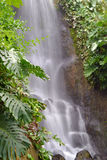 Waterfall  soft flowing water Stock Image