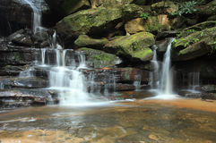 Waterfall Somersby Falls Australia Royalty Free Stock Photo