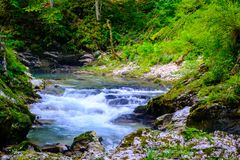 Waterfall at Soteska vintgar, Slovenia The Vintgar Gorge or Ble. D Gorge Royalty Free Stock Image