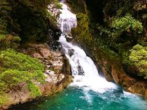 Waterfall, South Island of New Zealand Royalty Free Stock Image