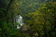 Waterfall in the South of Laos. Waterfalls in the jungle, one of the sights in southern Laos stock photo