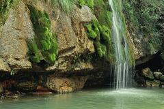 Waterfall in Spain, Campdevanol / Ripoll. Royalty Free Stock Image