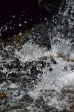Splash water with black background royalty free stock images
