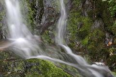 Waterfall in spring Stock Photo