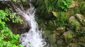 Waterfall in spring garden stock footage