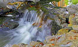 Waterfall in spring garden Stock Image