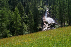 Waterfall and spring meadow Royalty Free Stock Images