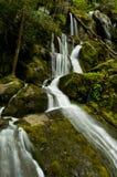 Waterfall after a spring rain. Stock Photos