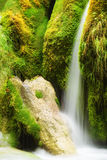 Waterfall in spring time Stock Photos