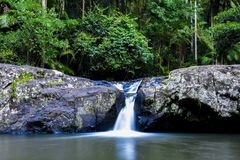 Waterfall In Springbrook National park Warringa Pool Royalty Free Stock Photography