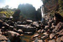 waterfall Sri Lanka royalty free stock photos