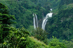 Waterfall in Sri Lanka Royalty Free Stock Photo