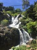Waterfall in Sri Lanka Royalty Free Stock Image