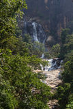 Waterfall in Sri Lanka Stock Photography