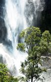 Waterfall on Sri Lanka Royalty Free Stock Photo