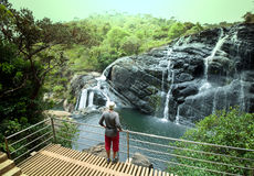 Waterfall on Sri Lanka Royalty Free Stock Photo