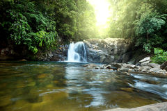 Waterfall on Sri Lanka Royalty Free Stock Images