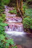 Waterfall from the stairs. Running water in the forest across the rocks in a green natural environment.waterfall from the stairs Stock Photo